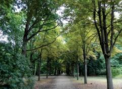 Berlin Park, Germany