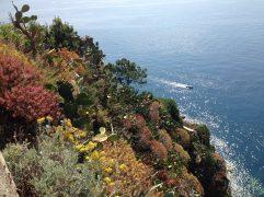 The Cinque Terre Coast